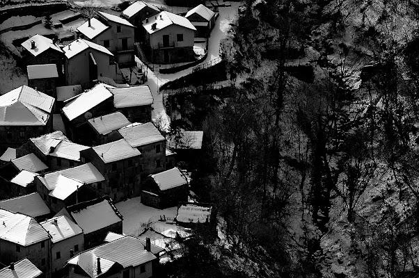 il bosco e le case di Augenblick