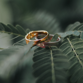 Indonesian Wedding's Rings by Muhammad Fadhil - Wedding Details ( love, indonesia wedding, wedding ring, couple, ring, indonesia, photography )