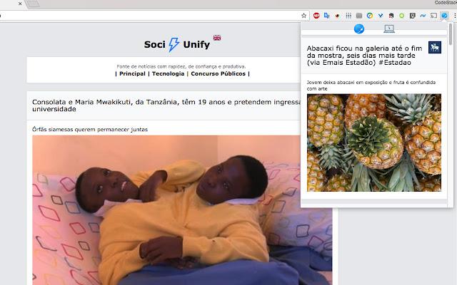 FaceBoost - SociUnify ®