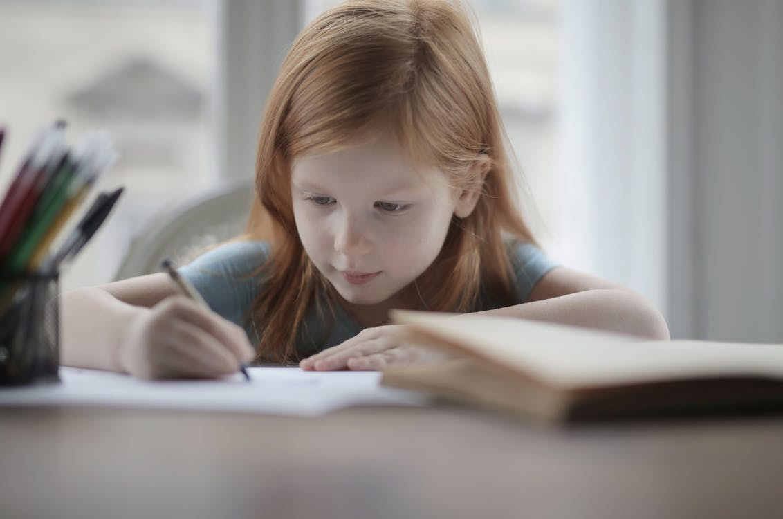Clever concentrated little girl doing homework at home