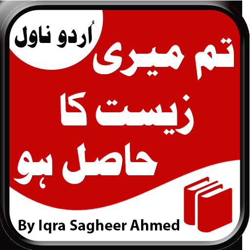 Tum Meri Zeest Ka Hasil Ho - Urdu Novel
