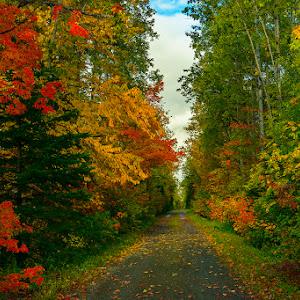 Colors of Canada.jpg