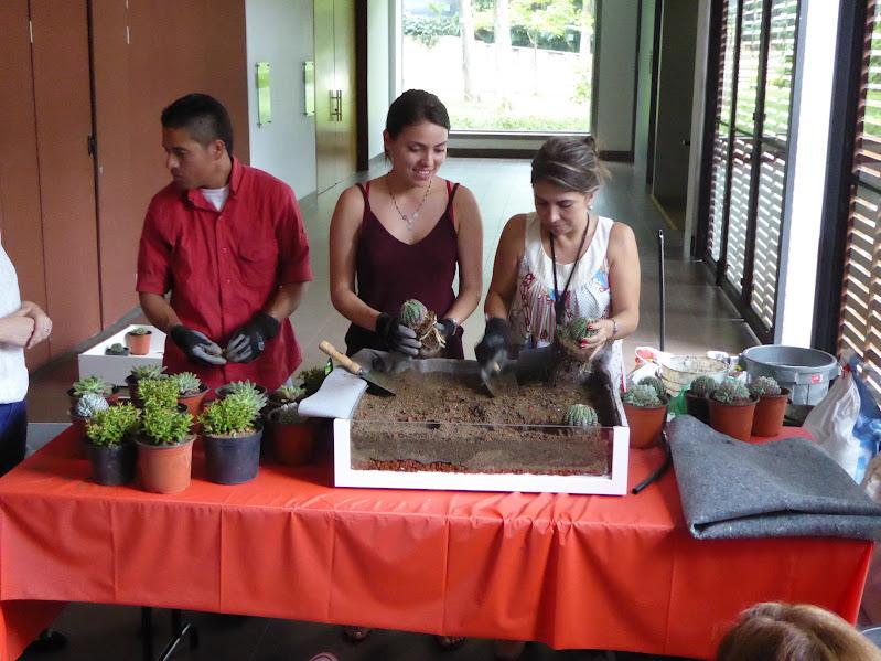 Curso de jardines verticales y cubiertas vegetales