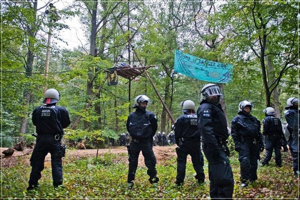 Os invasores das copas das árvores da floresta de Hambach