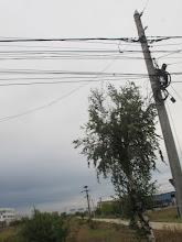 Photo: Rou5Ins201-151002réseau électrique aérien chargé, pas simple..., bus Bucarest-Curtea IMG_8798