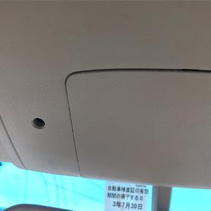 エルグランド E51のカスタム事例画像 ラスカルさんの2020年06月02日13:34の投稿