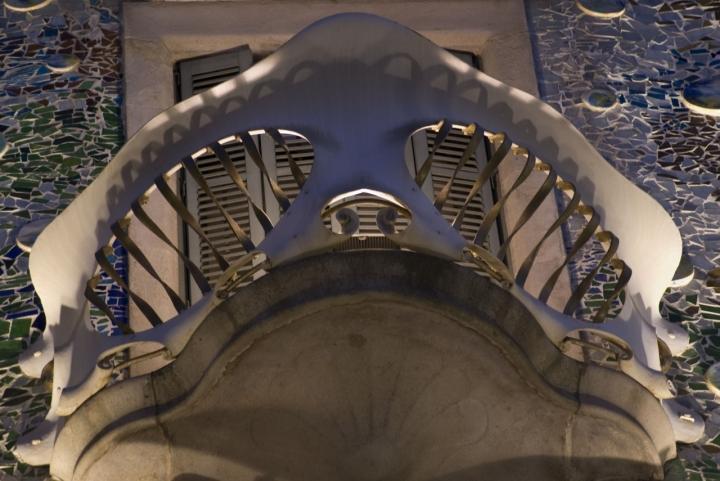 Lo squalo! di Tiziana Detoni
