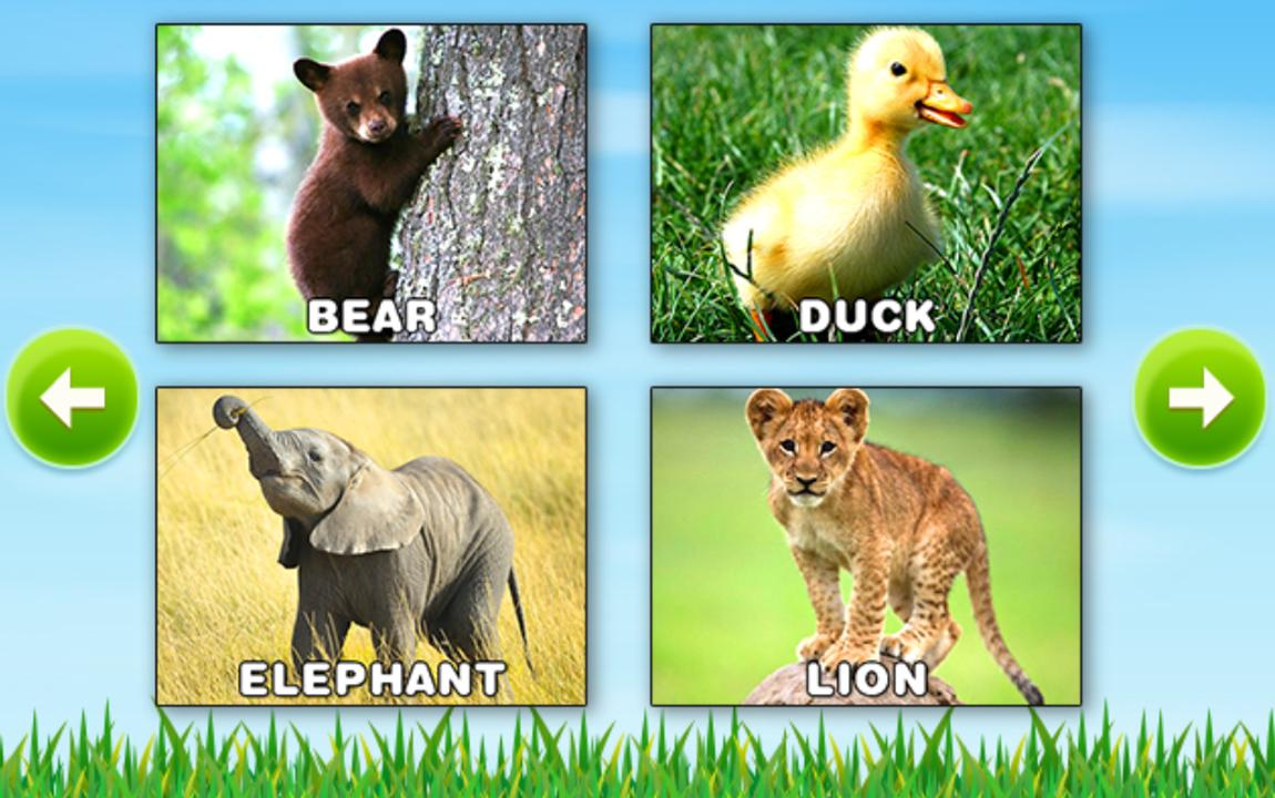 learn animals kids puzzle android apps on google play