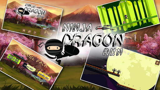 Ninja Dragon Run
