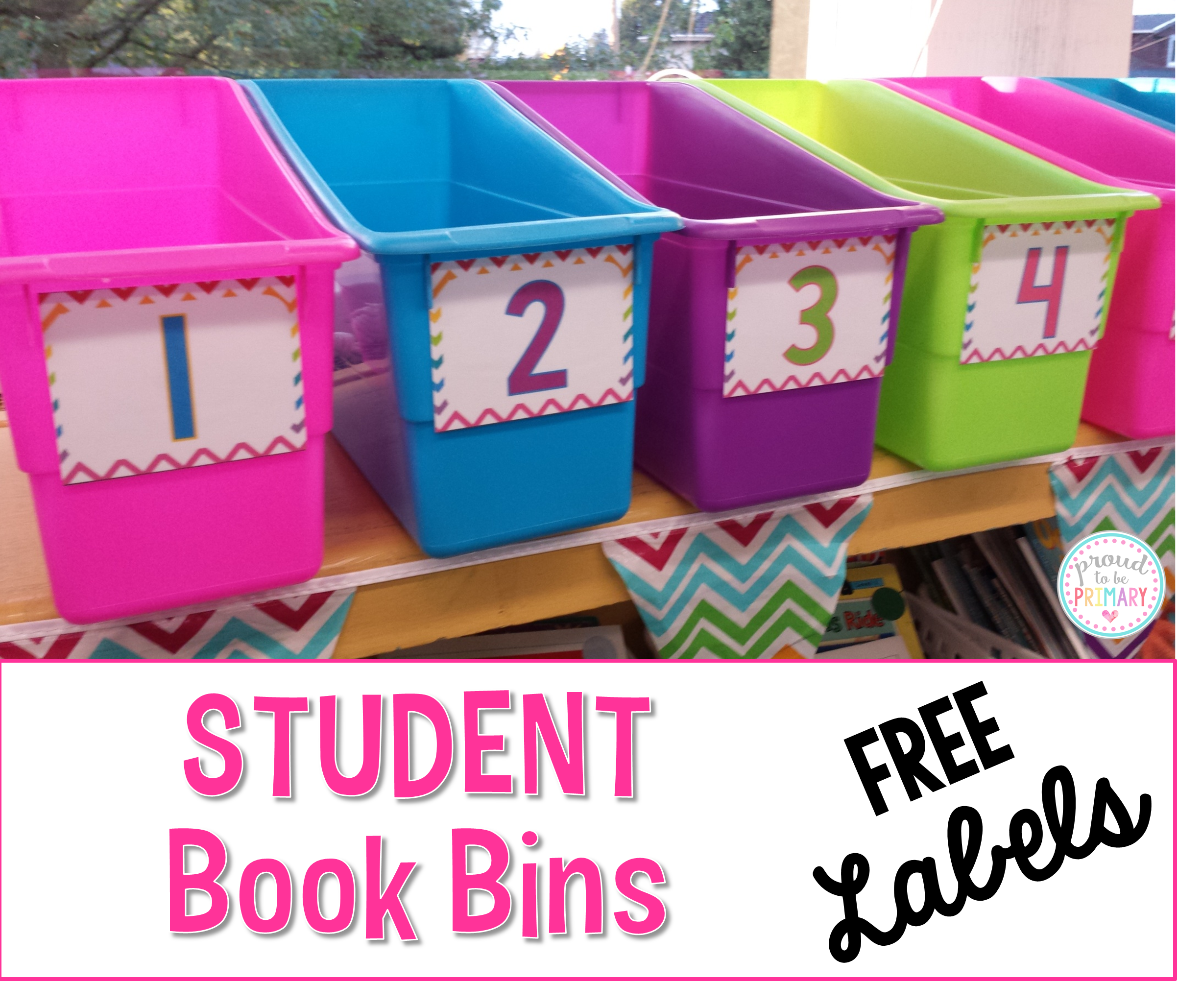 setting up a classroom and home reading program - free student book bins labels