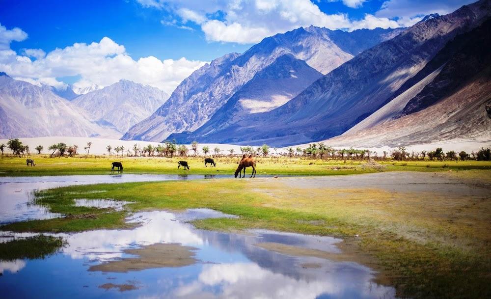 top-10-biosphere-reserves-india-Cold_Desert_Biosphere_Reserve-Image