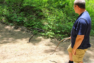 Photo: Mr. Quinn was the chief snake wrangler, of course