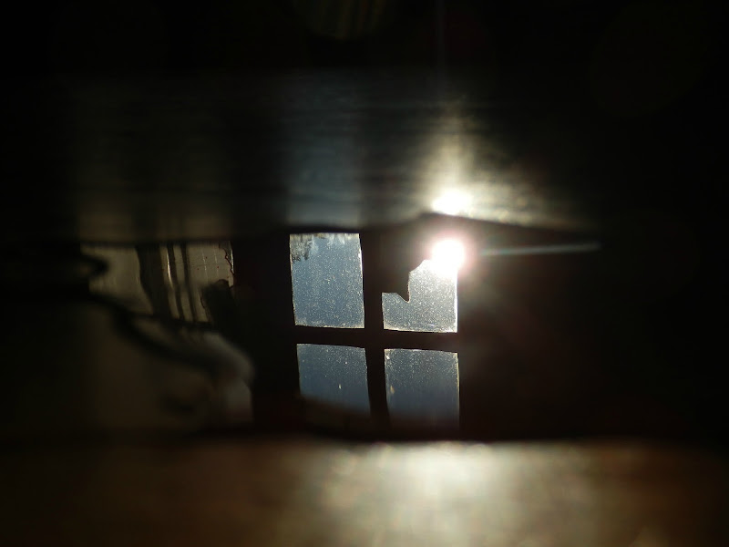 Gatto sulla finestra...nel caffè sul tavolo di nana7