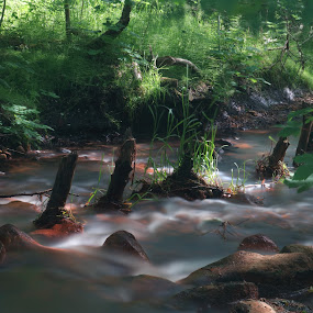 The old mill stream by Per Holt Oksen-Larsen - Landscapes Waterscapes ( mill, stream, old, esbjerg, the )