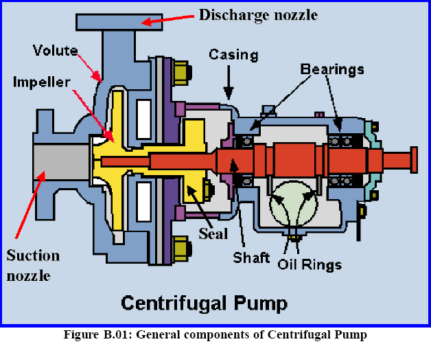 My Engineering School Piping Questions Pump Alignment
