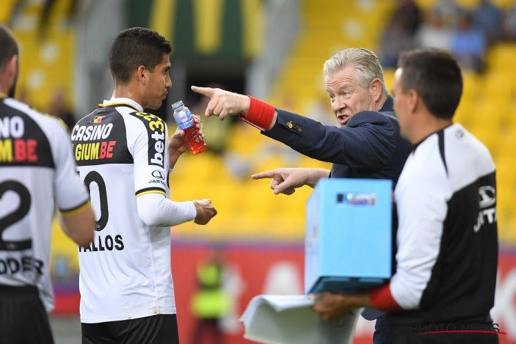 Sporting Lokeren haalt verdediger op in Serie A, Peter Maes geeft ambities voor het nieuwe seizoen prijs