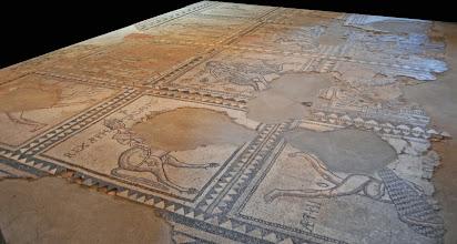 Photo: Pavimento in mosaico appartenente alla cattedrale romanica (1095)
