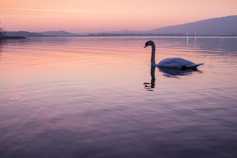 La bellezza della solitudine di DB_Photography