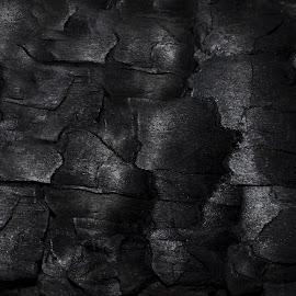 black burnt log background by Kristina Victoria - Abstract Macro ( black background, background, black, pattern, black pattern, burnt )