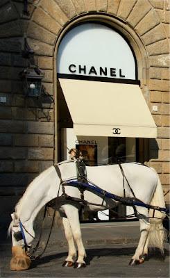 C  C , Chanel  Cavallo di happy