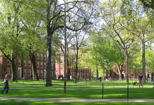 Star Parker: Anti-free speech craze on campuses limits diversity
