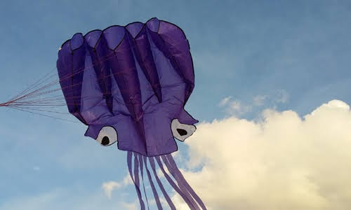 Octopusy Kite