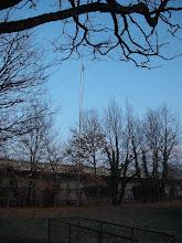 Photo: L'antenne NVIS 80-40 mètres