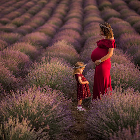 family by Marius Igas - People Family ( love, mother, pregant, family, daughter, lavender, summer )