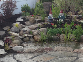 Photo: Check out this gorgeous #Backyard ecosystem #FishPond we did in Brighton NY, Monroe County. It has LED landscape lighting, plantings and more. We used an Aquascape filtration system to ensure highest quality of clear water and so easy to take care of!  Acorn Ponds & Waterfalls, Certified Aquascape Contractor since 2004. Check out our website www.acornponds.com and give us a call 585.442.6373.  To learn more about ecosystem fish ponds, click here: www.acornponds.com/ponds.html  Click here for a free Magazine all about Ponds and Water Features: http://flip.it/gsrNN  Sign up for your personal design consultation here: www.acornponds.com/contact-us.html  Find us on Houzz here: www.houzz.com/pro/acornlandscapedesign/acorn-landscaping-and-ponds-llc  To learn more about Acorn Ponds & Waterfalls Services, please click here: www.acornponds.com/services.html  To see more of our #pondinstallations on Facebook click here: www.facebook.com/media/set/?set=a.464911070212687.94604.103109283059536&type=3  Acorn Ponds & Waterfalls  585.442.6373 www.acornponds.com
