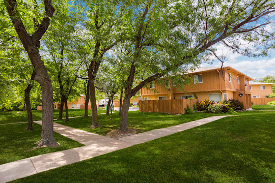 Apartment building with connecting sidewalks and shade trees