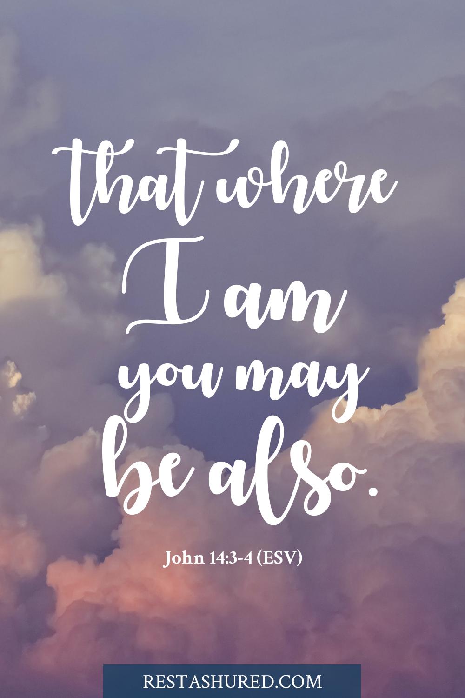 Photo of Bible verse for John 14:3-4