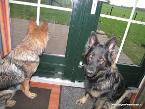 Photo: Sifra en Aiki waaks voor het raam