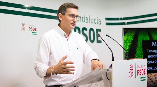 """PSOE: """"El Gobierno ha avalado con 547 millones a las empresas almerienses"""""""