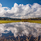 89 cloud reflection in pasture resize.png