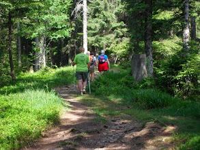 Photo: über herrliche Waldwege...