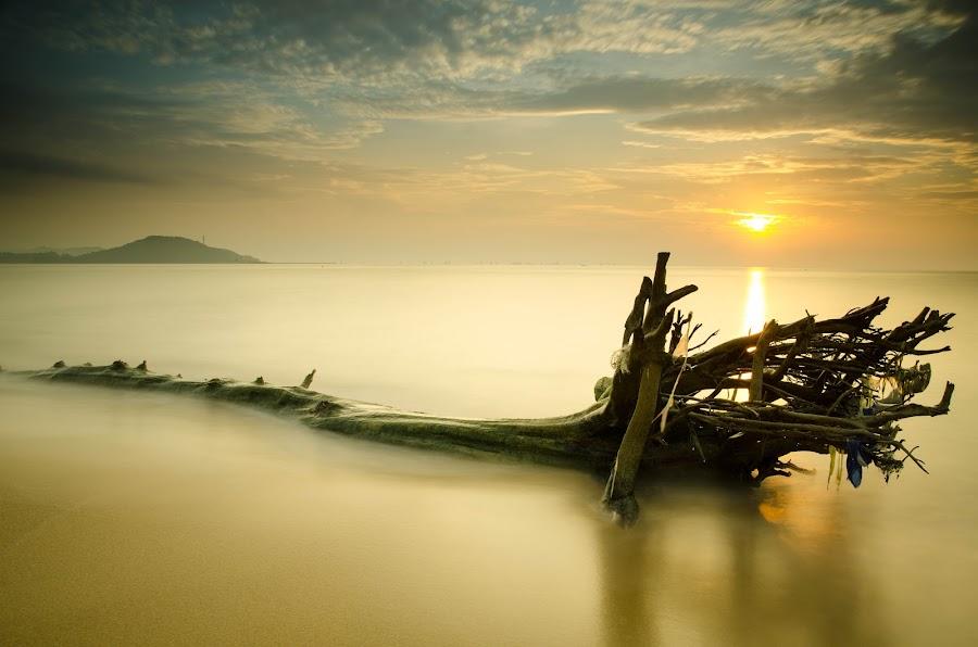 geliga beach on independent day by Shaharudin Hanifah - Landscapes Sunsets & Sunrises ( hanifah shaharudin, raha my, fathin izzati shaha, moshaha, baderul sham )