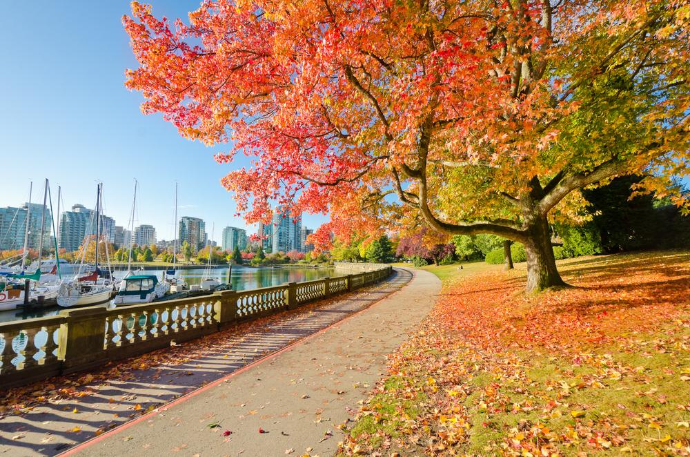 加拿大打工度假遊學留學必去景點stanleypark2