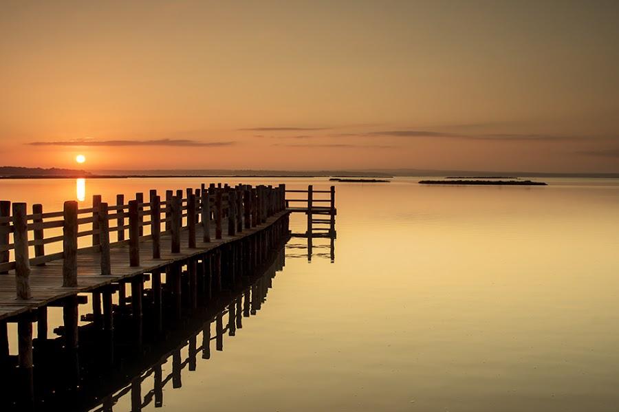 Harmony by Paulo Mendonça - Landscapes Sunsets & Sunrises
