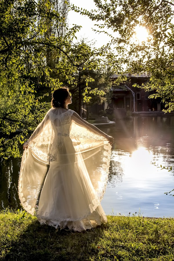 In the sunlight by Panait Sorin - Wedding Bride ( bride, sunlight, contrast )