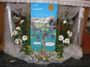 Photo: Oltar sa salikama prvppročesnika