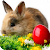 Easter Bunny Wallpaper file APK for Gaming PC/PS3/PS4 Smart TV