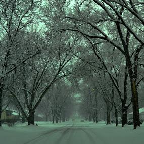 snows by Karen Carnahan - City,  Street & Park  Street Scenes ( bus, street, snow, joliet )