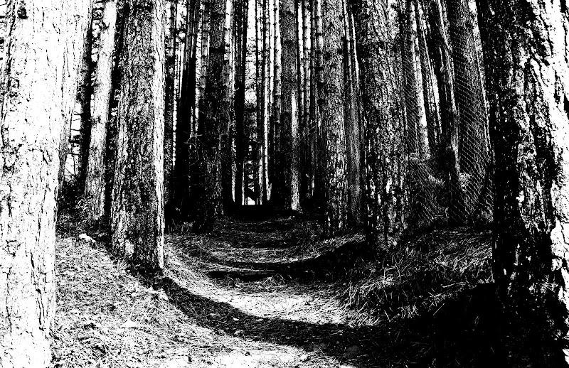 sentiero solitario di Bianconero