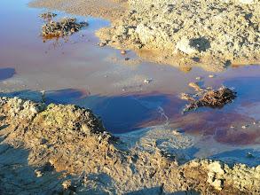 Photo: 12.1.2014 - Tekutý odpad v lagunách skládky. Objem těchto lagun mnohonásobně převyšuje kapacitu záchytné jímky. Ale to asi není hlavní problém - tekutý obsah skládky bez jakýchkoliv překážek vsakuje do podloží a proniká do půdy na obecním pozemku dále po svahu. — Dekontaminační plocha Rokytí.