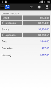 Expense & Revenue – miniaturescreenshot