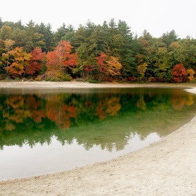 Fall in Walden Pond by Anastasiya Manuilov - Landscapes Travel ( walden pond, history, thoreau )