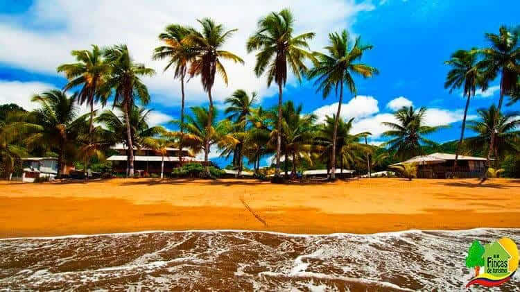 Paquetes Turísticos Bahía Solano Temporada Baja