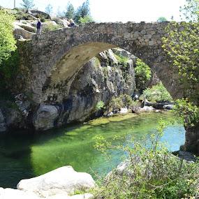Genova bridge by Molnar Csilla - Landscapes Waterscapes ( water, ancient, stone, bridge, river,  )