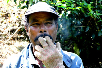 Photo: Year 2 Day 115 -  You Can See the Enjoyment of This Tea Worker's Fag