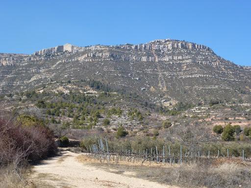 Roca Corbatera